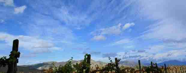 etna wine tour
